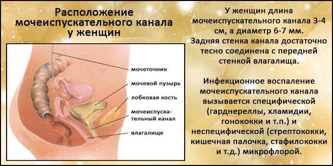 Чи можна заразитися циститом через поцілунок