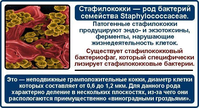 Колипротейный бактеріофаг при циститі як приймати