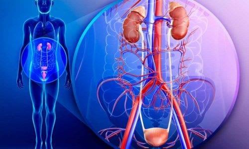 Методи лікування циститу і пієлонефриту