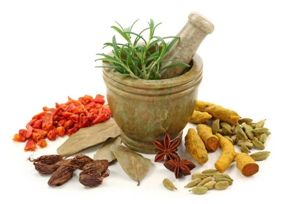 nayb l sh efektivn narodn zasobi dlya l kuvannya holecistitu 1 - Найбільш ефективні народні засоби для лікування холециститу