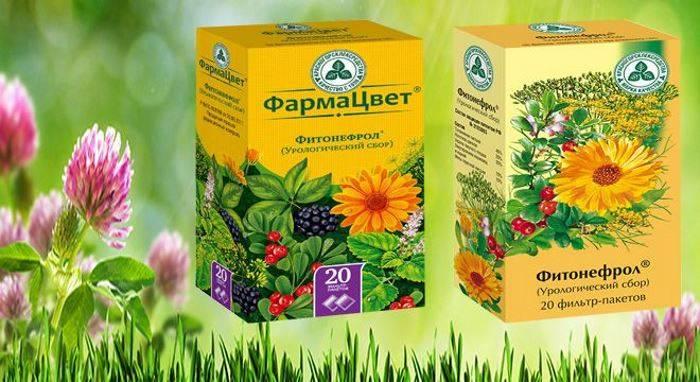 Порадьте протизапальний чай при циститі